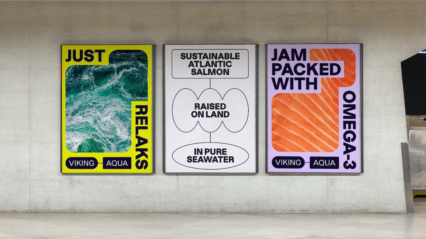 ANTI Viking Aqua Identity Advertising