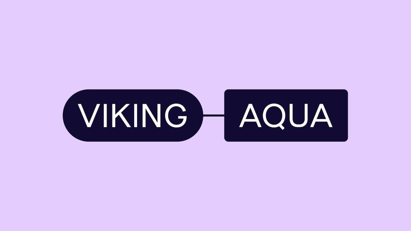 ANTI Viking Aqua Identity Logo