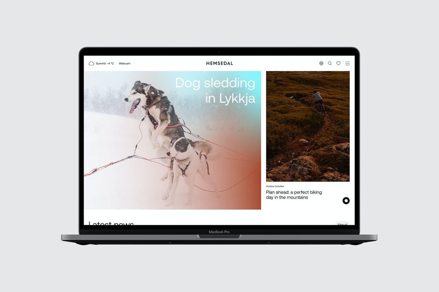 Hemsedal Website Flat01